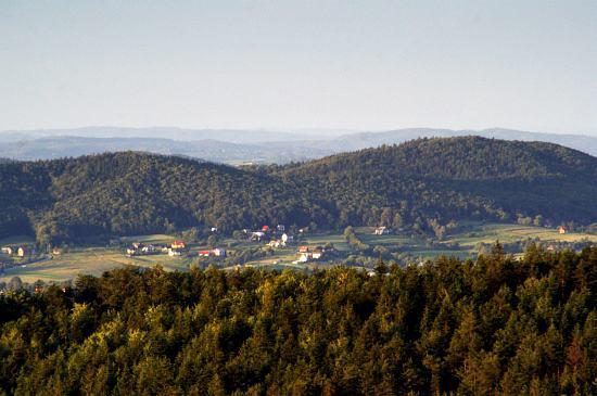 Nieruchomości na terenie powiatu myślenickiego